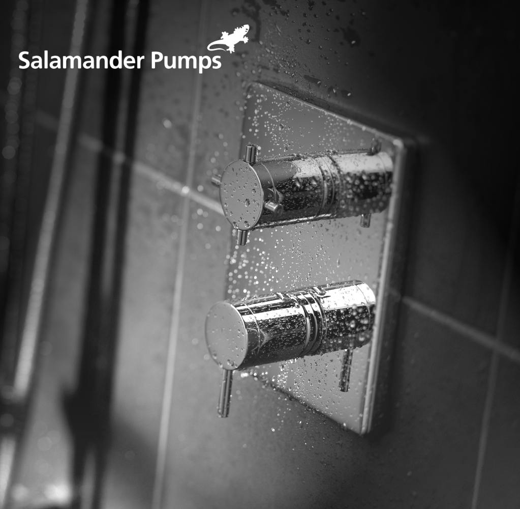 Choosing the right Salamander Pump