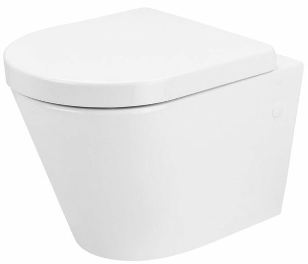Lecico Designer Series 5 DS5RIMWHP Rimless Wall Hung Pan & Seat Set